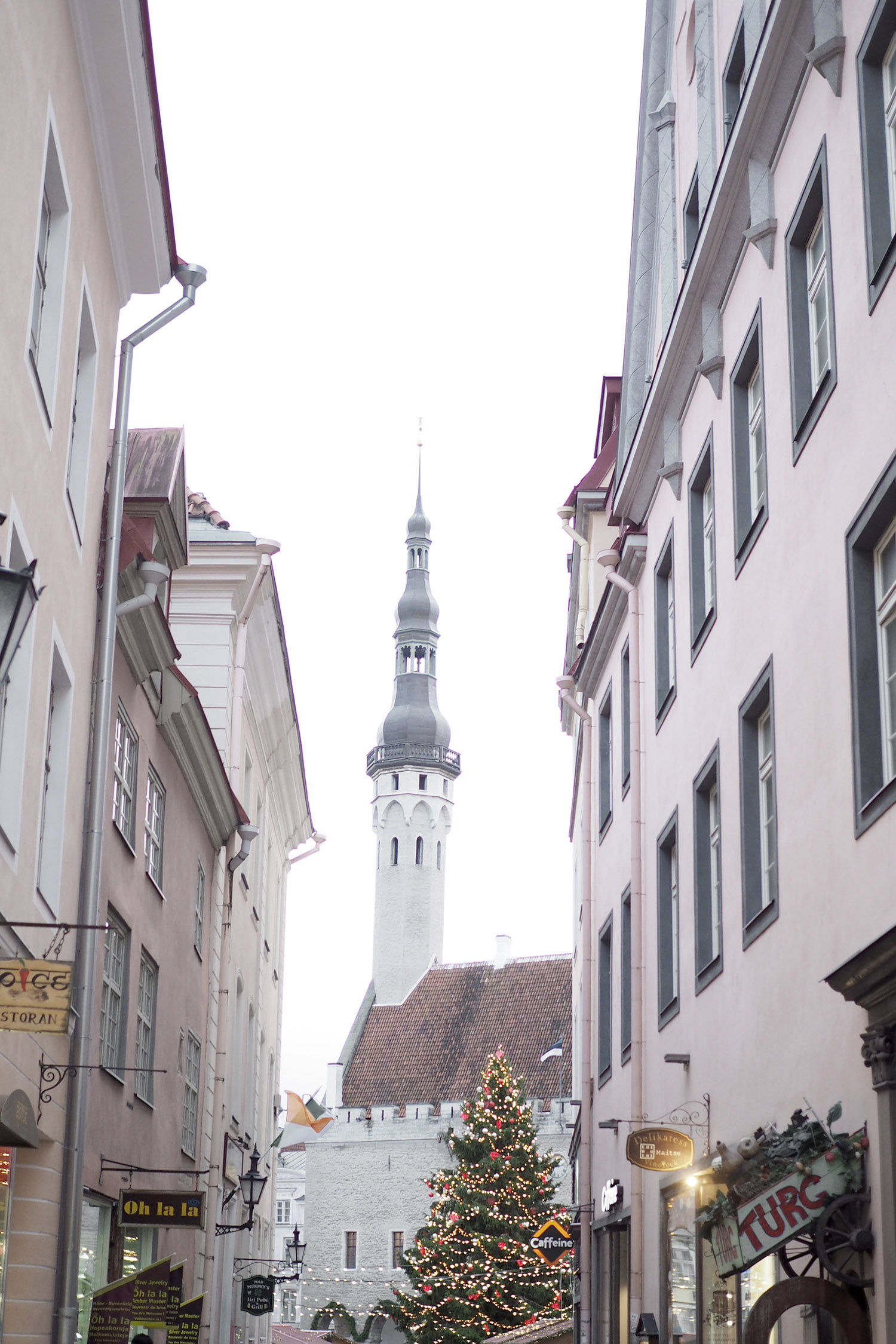 Char and the city, Tallinn, Estonia, Christmas market