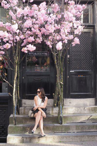 Char and the city, charandthecity.com, kirsikkapuu, Amsterdam, cherry blossom, cherry tree, äitienpäivä, mother´s day