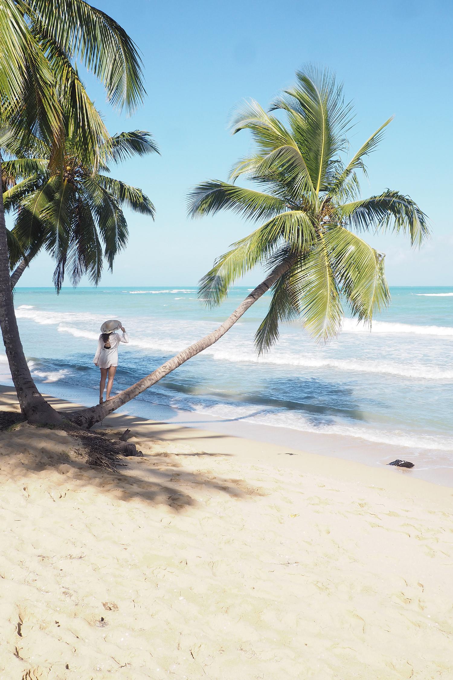 Char and the city, charandthecity.com, Dominikaaninen tasavalta, Karibia, Caribbean, Dominican Republic, Viva Wyndham V Samana hotel